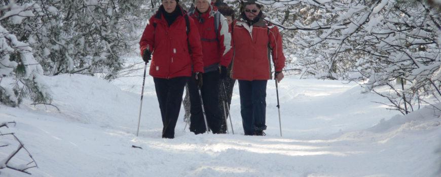 Foto Winterwandeltocht (1)-2