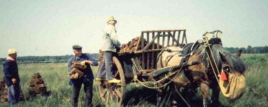 In de Peel turf ophalen met paard en wagen