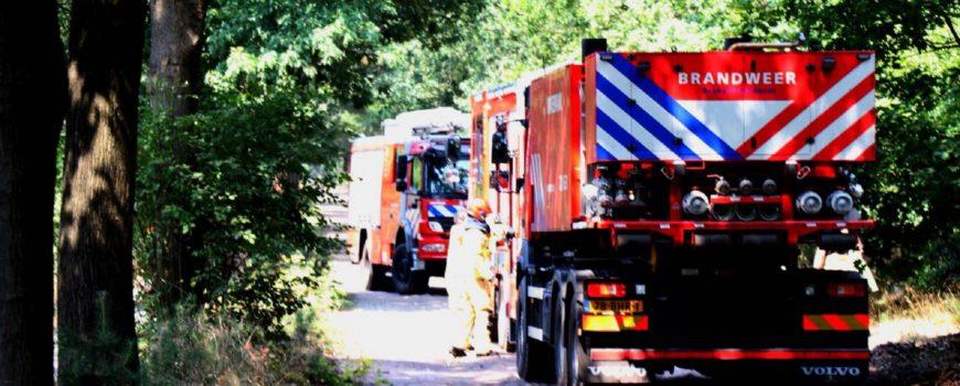 Bos brand in Vlierden door brandweer bedwongen