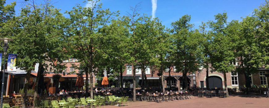 Groeiproblemen bomen Markt