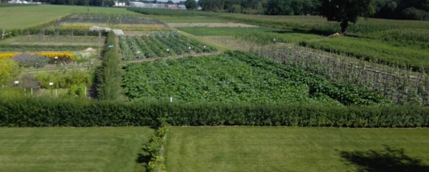 Groententuin Bijzonder Brabants